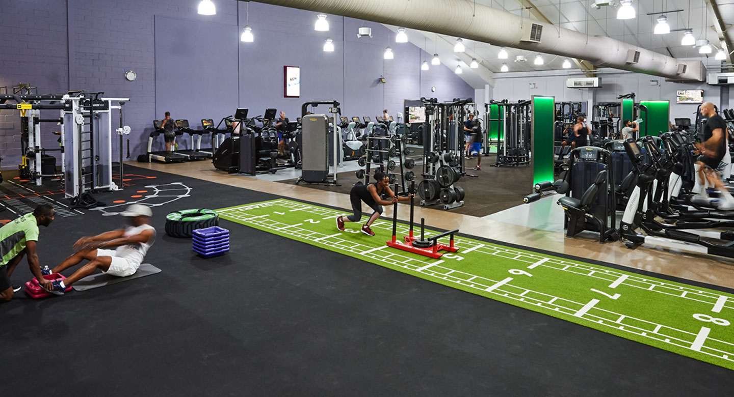Image of the gym at David Lloyd Purley