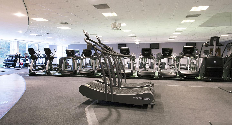 Gym at York